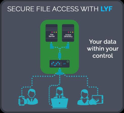 lyf_vs_consumer_grade_storage2